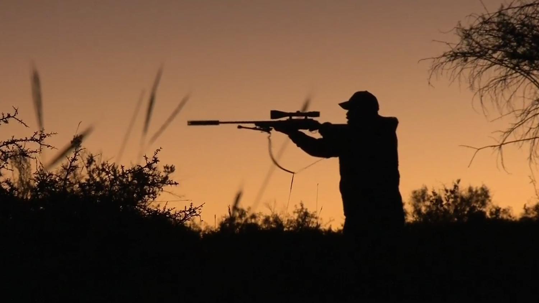 suppressor hunting bill sent to montana governors desk